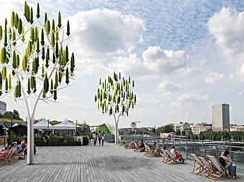 wind-tree-park-537x402